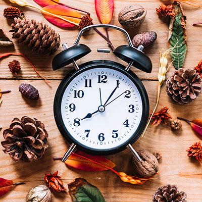 Reveil analogique entouré de pommes de pins, feuilles et noix