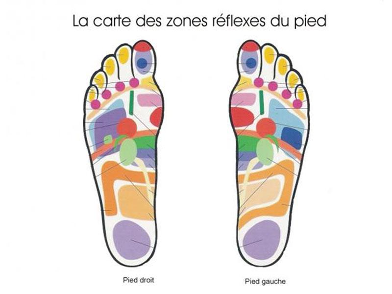 carte des zones réflexes du pied